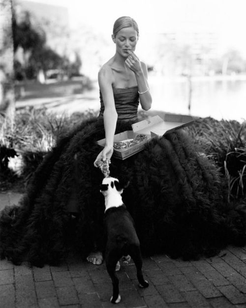 Bruce-weber-dog-photos-canine-puppy-photographs-201202